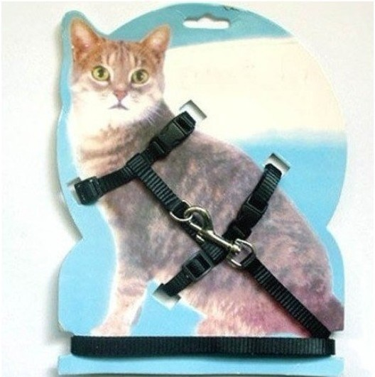 Walking toy cat with lead