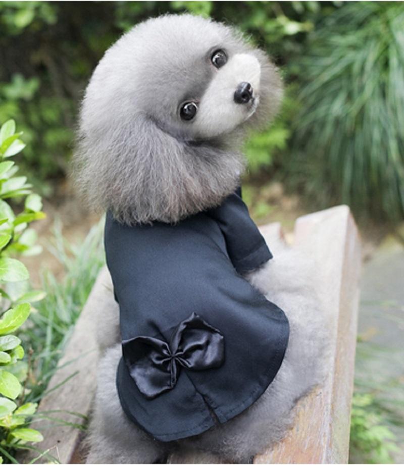 chien de mariage costumes promotion achetez des chien de mariage costumes promotionnels sur. Black Bedroom Furniture Sets. Home Design Ideas