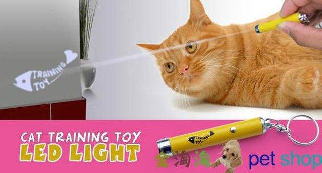 funny Cat's Toys /LED cat toys, pet laser toys,new dual laser pointer, cat laser pen