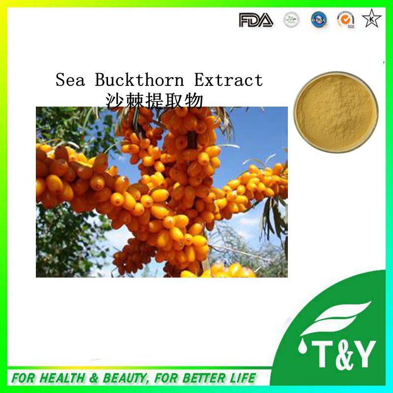 Wholesale  Reduce blood press / Sea Buckthorn Seed Extract/Hippophae Rhamnoides Extract 500g/lot<br><br>Aliexpress