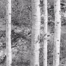 053x10m forest birch tree wallpaper for walls 3 d green blue gray branches of tropical