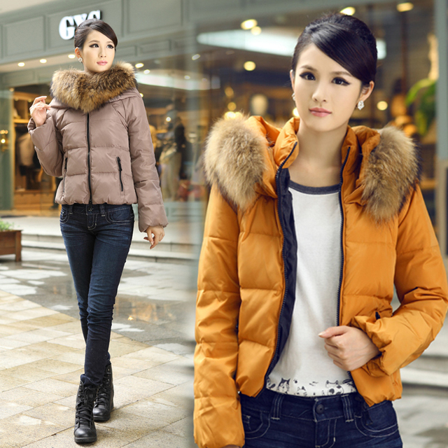Free shipping 2013 winter new arrival large fur collar slim zipper women's down coats 0221071303