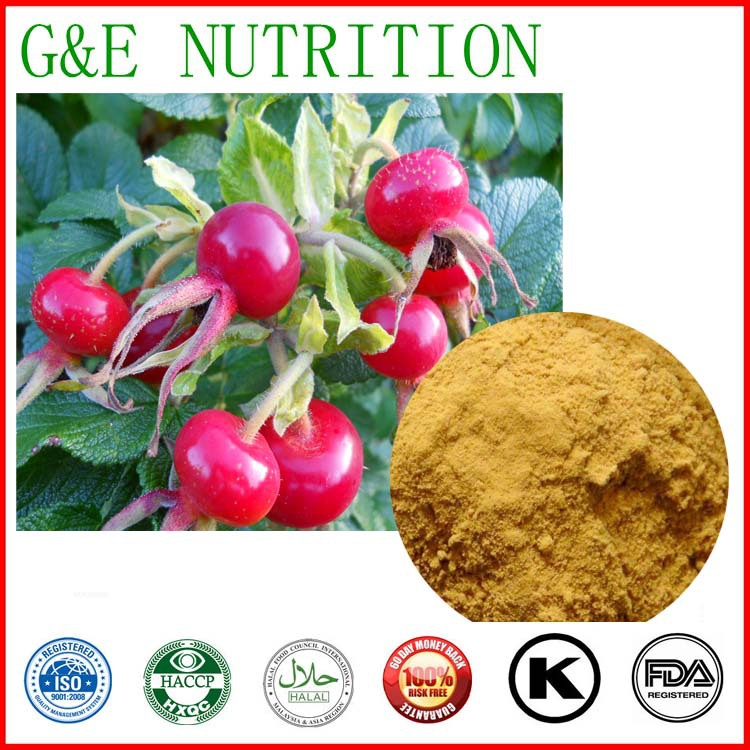 100% Natural Wild Rosehips Extract  4:1 800g<br><br>Aliexpress