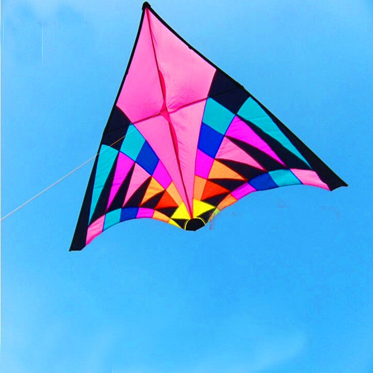 free shipping high quality 6squaremeters large delta kite easy control so beautiful in the sky ripstop nylon fabric kite weifang(China (Mainland))