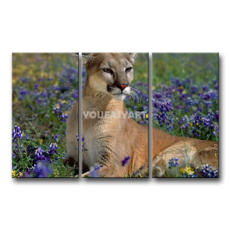 3 Piece Painting On Canvas Wall Art Cougar Cute Animal