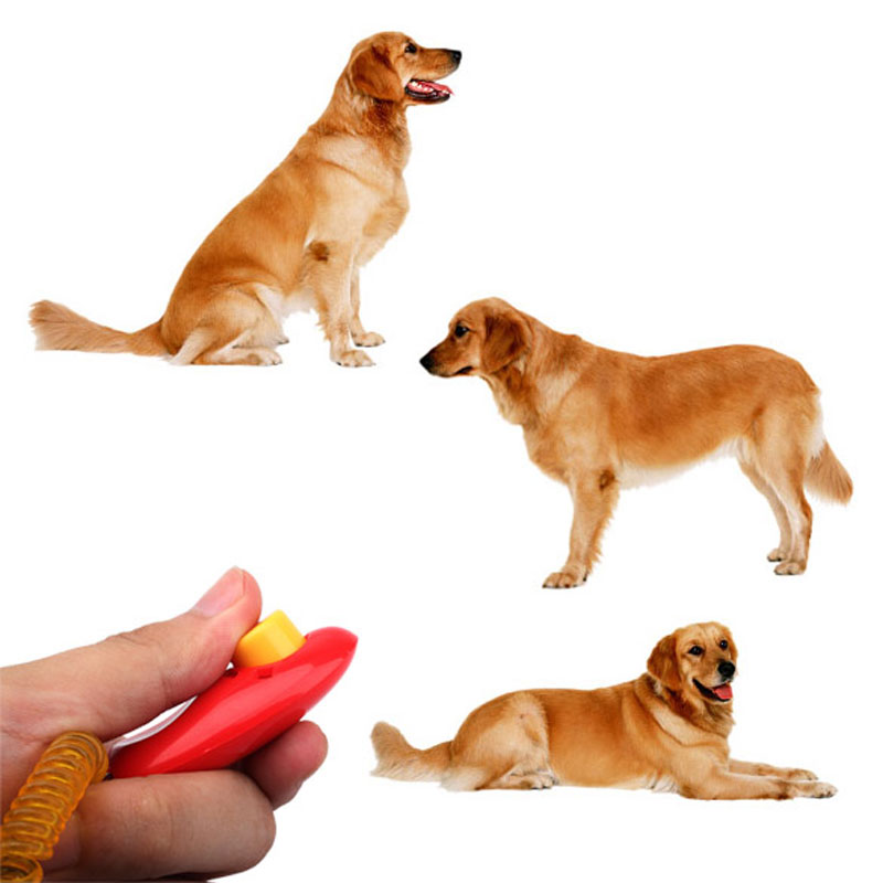 Гаджет  New Dog Pet Click Clicker Training Trainer Aid Wrist V3NF None Дом и Сад