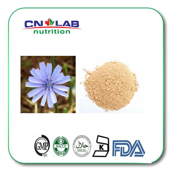 100% natural Chicory root powder,Matrine 98%,Sophora Flavescens Root Extract Matrine