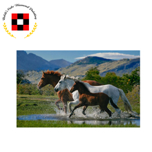 5D Diamond embroidery animal diamond cross stitch Rubik's cube painting diy horse - Yiwu Chunfeng Painting Factory store