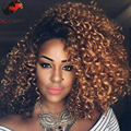 2016 new arrival 180 density kinky curly two tone human hair wigs 1b 30 ombre lace