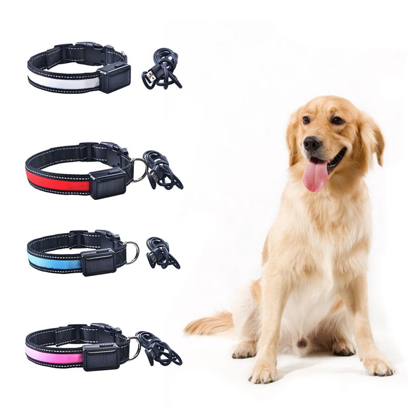 New LED Solar Light Dog Collar Night Glow Pet Neck Chain USB Charging Flash Pet Animal Collar Waterproof Energy Saving Dog Strap(China (Mainland))