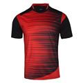 Thai quality sporting 2016 2017 soccer shirts men soccer jersey shirt paintless football training jersey jogging