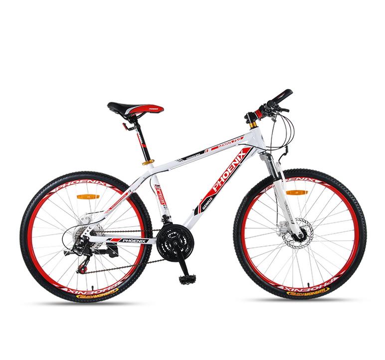 Wheel 26 Mountain Bike 21
