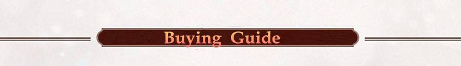 buy guide