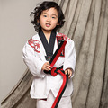 high quality cotten and bamboo fiber ITF series of adult and children Taekwondo clothes embroidery