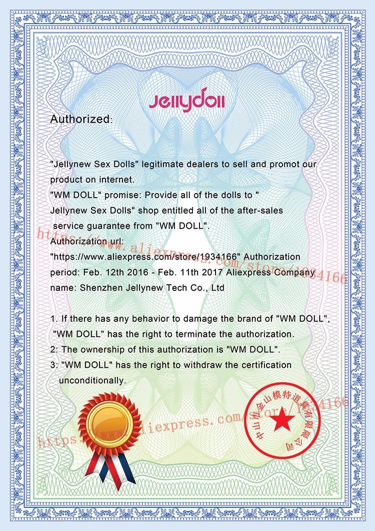 WMDOLL-Certificate