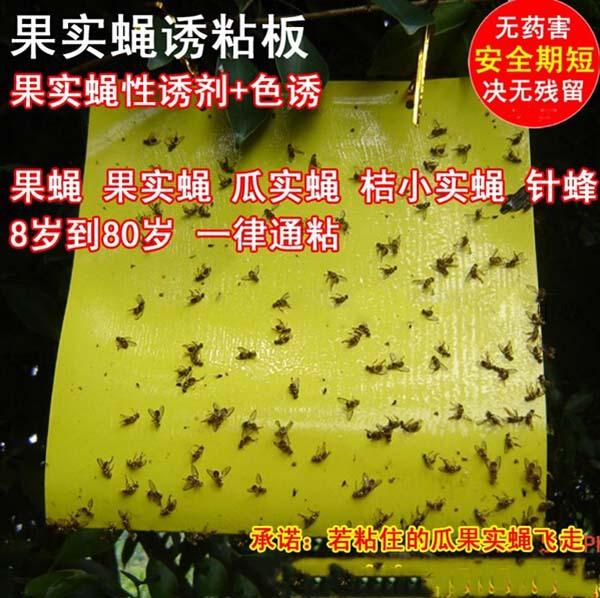 Борьба с вредителями из Китая