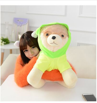 big plush green clothes Pomeranian toy lovely Pomeranian dog doll gift about 50cm<br><br>Aliexpress