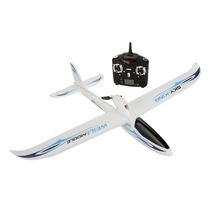 Wltoys F959 SKY-King 2.4G 3CH Radio Control RC Airplane Aircraft RTF(China (Mainland))