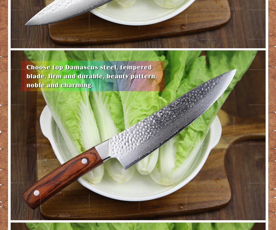 "Buy XINZUO 8 "" chef knife senior meat/vegetable knife 67 layer Japanese Damascus steel kitchen knife Color wood handle free shipping cheap"