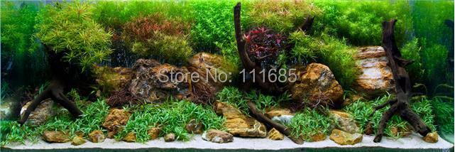 ... Aquarium-Decoration-Aqua-Garden-Landscape-Poster-Fish-Tank-Background