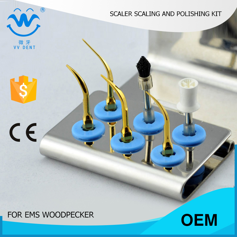 10 pcs ESPKG home dental cleaning kit for scaling and polishing fit EMS scaler tips and woodpecker mectron w&h piezo scaler(China (Mainland))