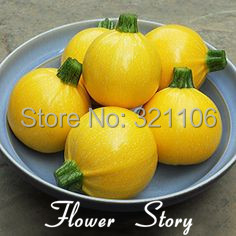 Big promotion: 50 Golden Squash Summer Ball F1 ( Zucchini, Courgette)Seeds, Cute DIY Potted or Yard Vegetable, Free Shipping(China (Mainland))
