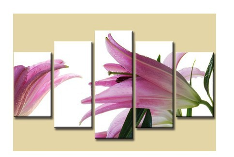 100% hand painted discount framed flower painting 5 panel canvas art modern sets home decoratio(China (Mainland))