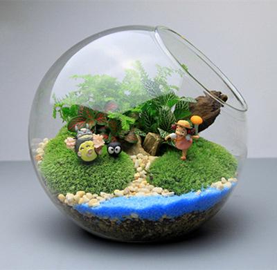 for Glasvase bepflanzen