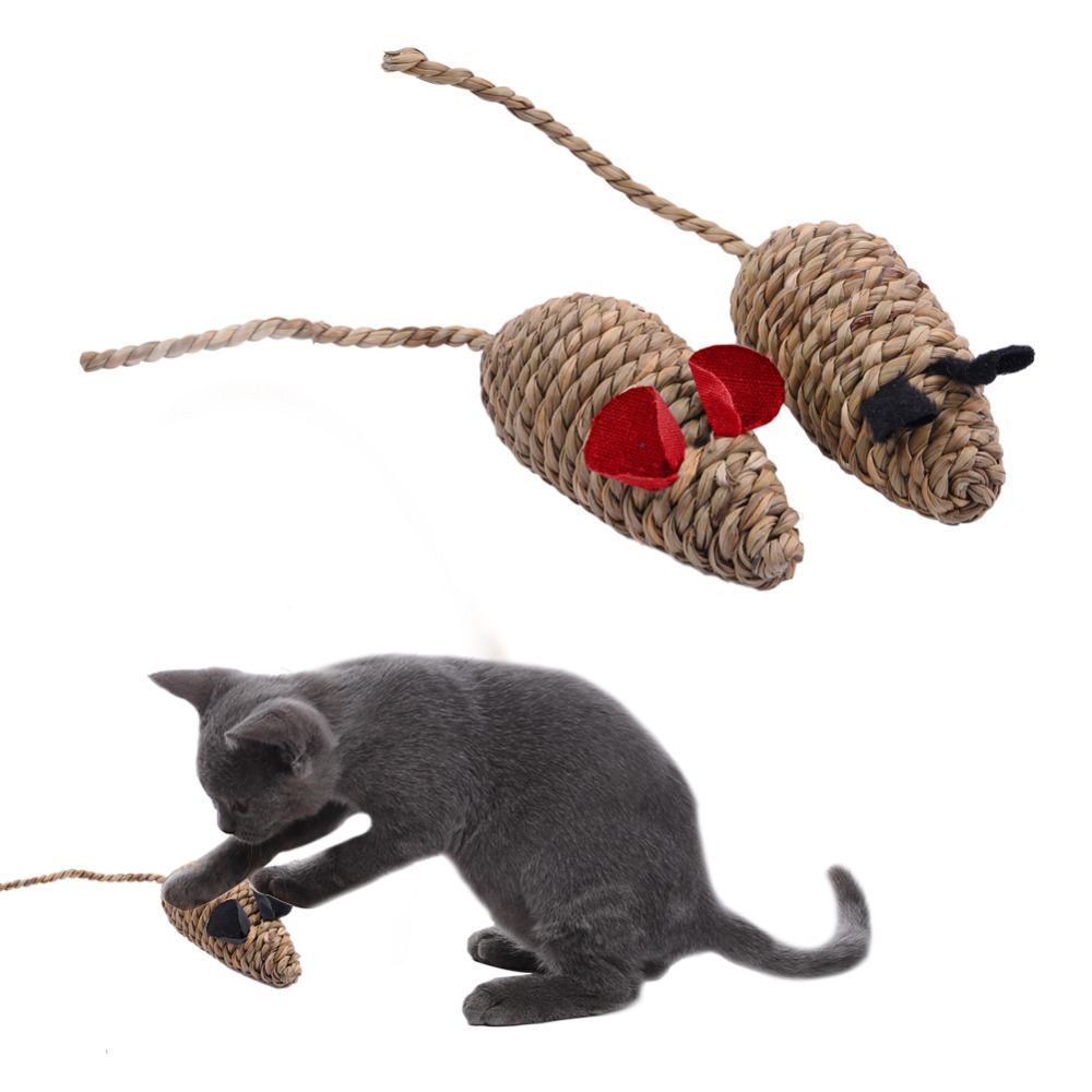 Good cat toys for indoor cats