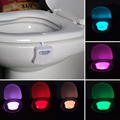 2017 8 Color Changing LED Lamps Body Washingroom Motion Bowl Toilet Nightlight Activated On Off Lights