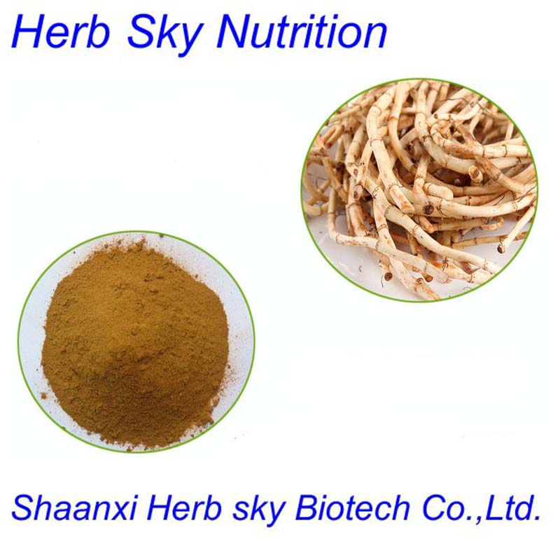 100% Natural Herbal Medicine Houttuynia Cordata Extract