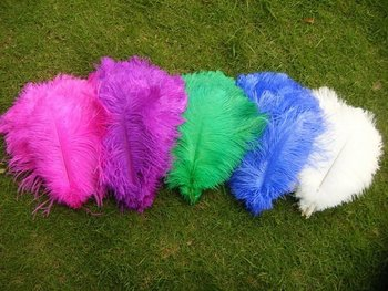 """Wholesale prices,12-""""14"""" inches length,100pcs/lot,ostrich feathers for wedding decor!"""