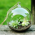 Fashion Transparent Clear Glass Round Terrarium Flower Plant Stand Hanging Vase Hydroponic Home Office Wedding Garden