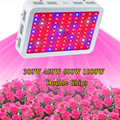 Cheapest Full Spectrum 300W 450W 600W 1000W Double Chip LED Grow Light lamps Red Blue White