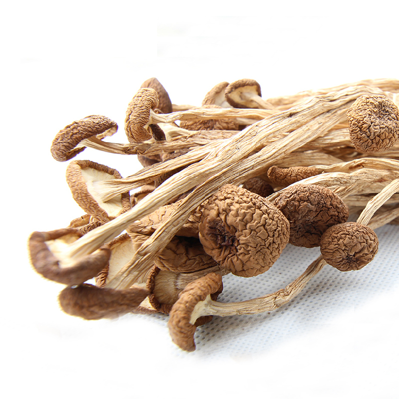 High quality natural 200g Tree tea mushroom, Fungus Rich In Beneficial Minerals Agrocybe Aegerita, Food raw material<br><br>Aliexpress