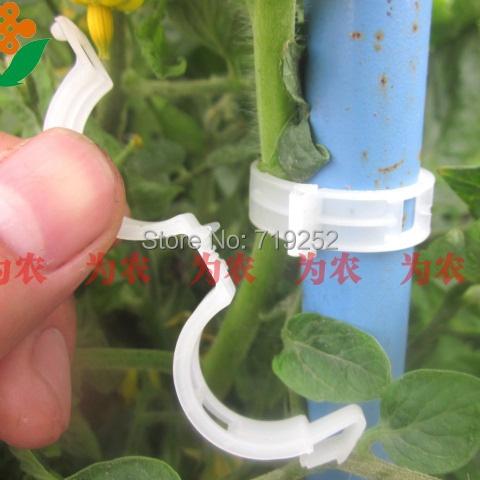 Товары для дома China*Agent 50 2.2-4.5mm товары для дома