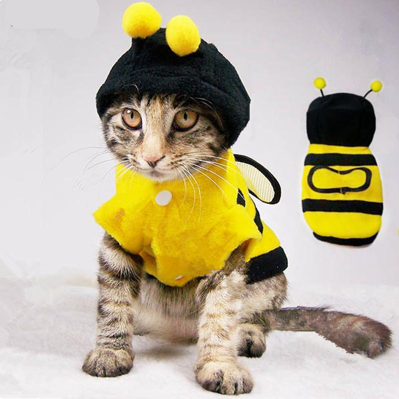 Желтая кошка Одежда для собак зимней