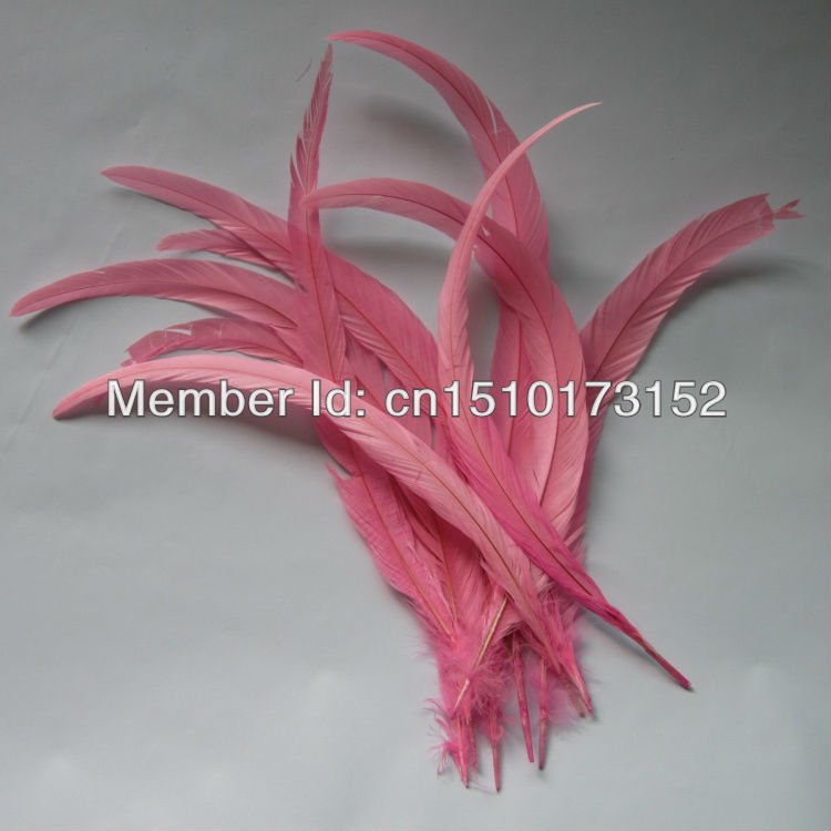 10s 12-14''/30-35cm Pink Dyed Loose Rooster Tail plume feathers Sale GJ1-4 - TiTi Feather Market store