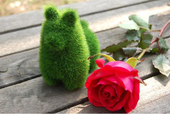 Household Gadgets Artificial Grass Plant Cute Animal Furnishing Articles(China (Mainland))