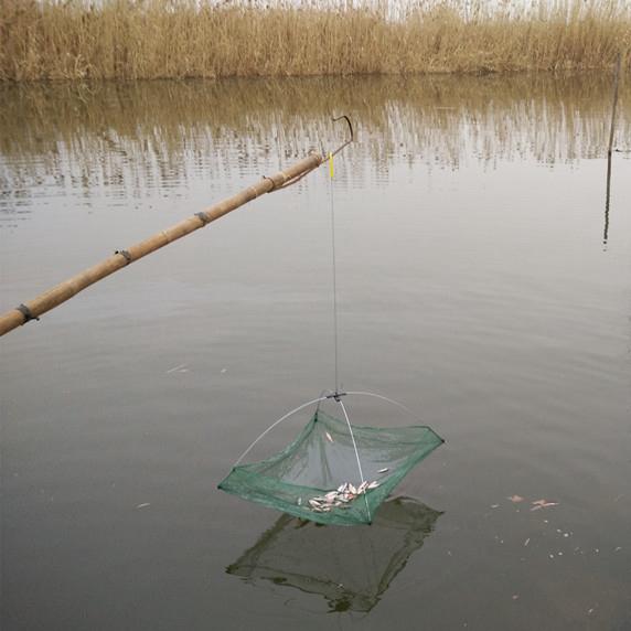 как ловить сетью ловушкой