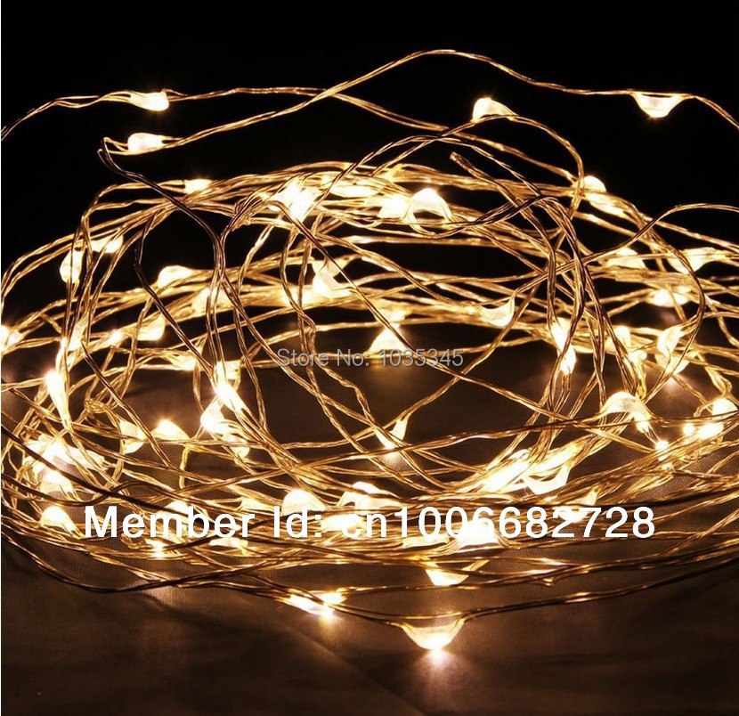 33Ft 10M 100LED Copper Wire string lights Fairy Lights Outdoor Christmas Wedding Party Decor 12V DC Power Adapter Included - SUNWAY OPTOELECTRONIC CO., LTD store