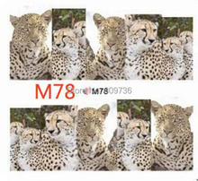 20 Sheets Set Wholesale New Animal Design Tip Nail Art Stickers Decal Tips Beauty Women Makeup