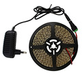 Waterproof 5M Led Strip Light 2835 120Leds M With 12V 2A Power Adapter DC12V IP65 Flexible