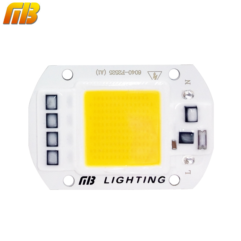 LED COB Lamp Chip 5W 20W 30W 50W 220V 110V Input Smart IC Driver Fit For DIY LED Floodlight Spotlight Cold White Warm White(China (Mainland))