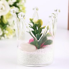 1Pc Glass Planter Flower Plant Vase Crown Shaped Hydroponic Container Candlestick(China (Mainland))