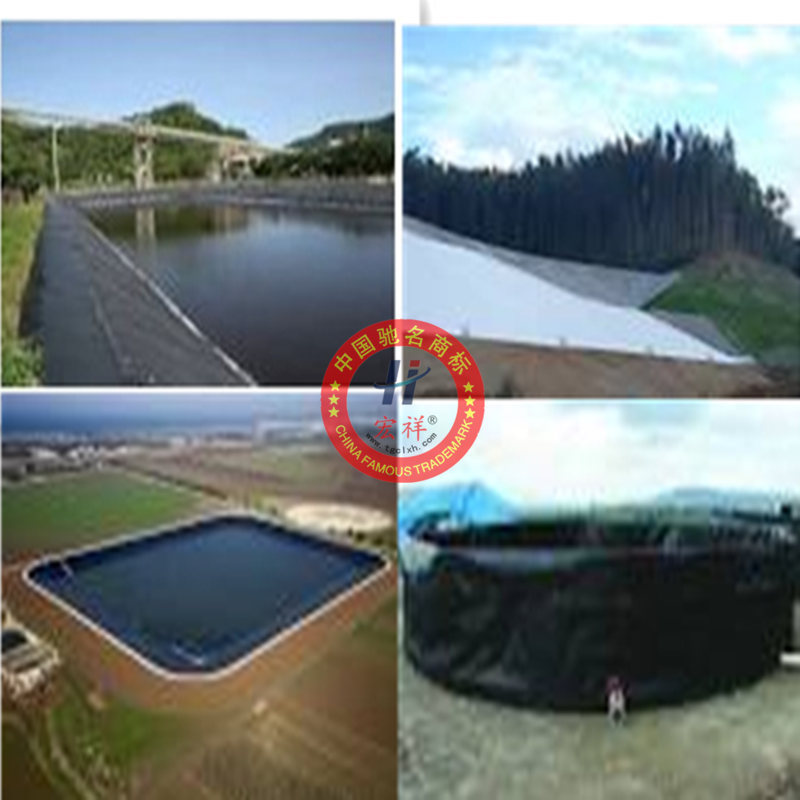 Dpe liner geomembrane for shrimp pond for Blue koi pond liner