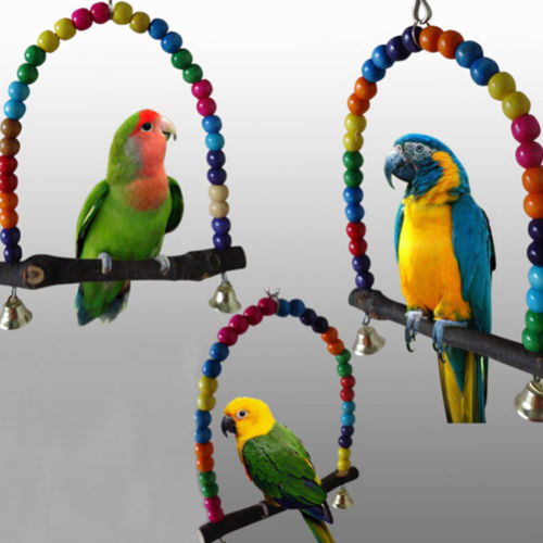Colorful Parrot Swing Bird Cage Toys Cockatiel Budgie Lovebird Woodens ... Group Of Colorful Birds