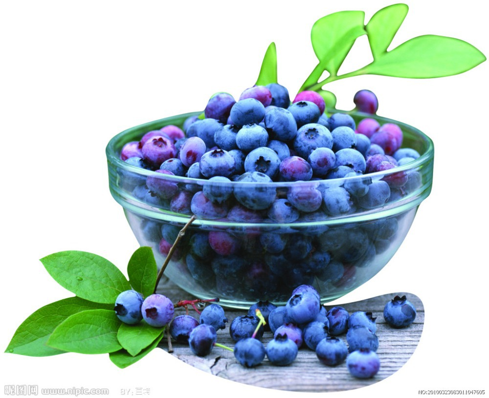 HOT SELLING BLUEBERRY SEEDS BONSAI TREE * 100PCS WITH HERMETIC PACKAGING DIY HOME GARDEN AMERICAN BLUEBERRY Fruit Seeds(China (Mainland))