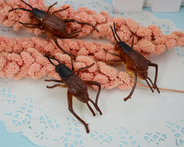 FREE SHIPPING Model toy tricky toy cricked grasshopper 5-7CM(China (Mainland))