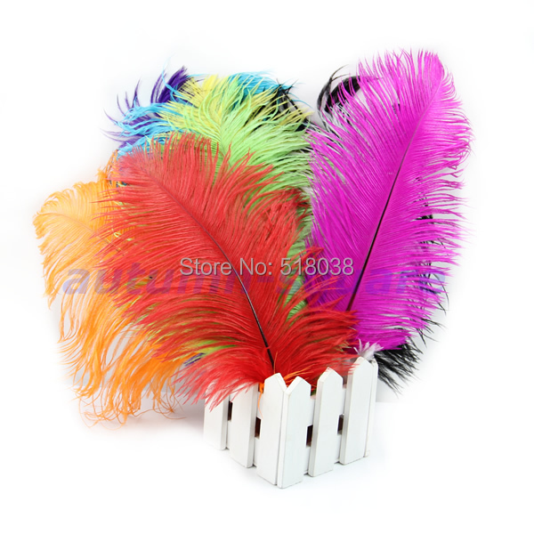 A25 hot-selling newest 9pcs/lot Natural Quality Ostrich Feathers 12-14inch/30-35cm Color Selection Free Shipping(China (Mainland))